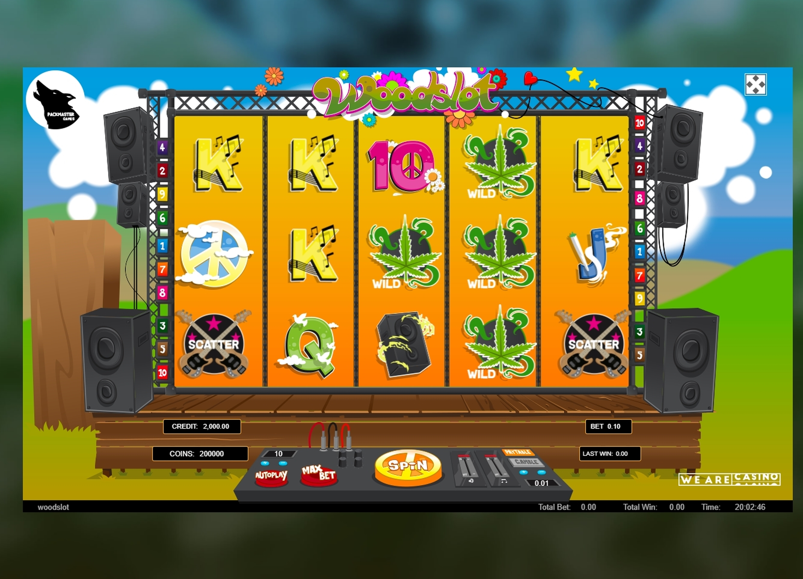 Reels in Woodslot Slot Game by Packmaster Games