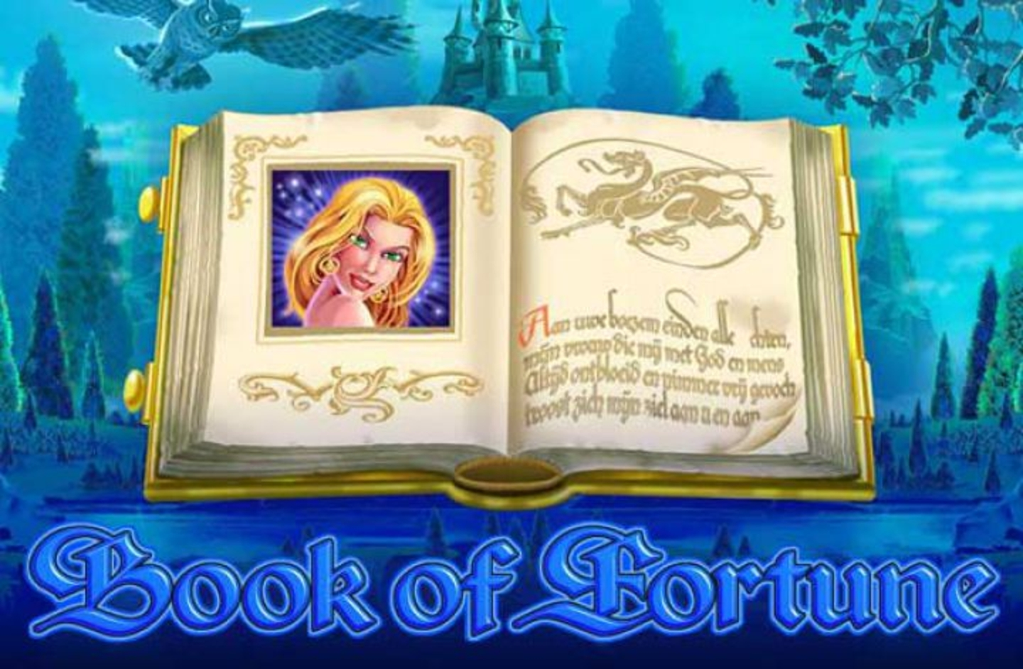 The Book of Fortune Online Slot Demo Game by Amatic Industries
