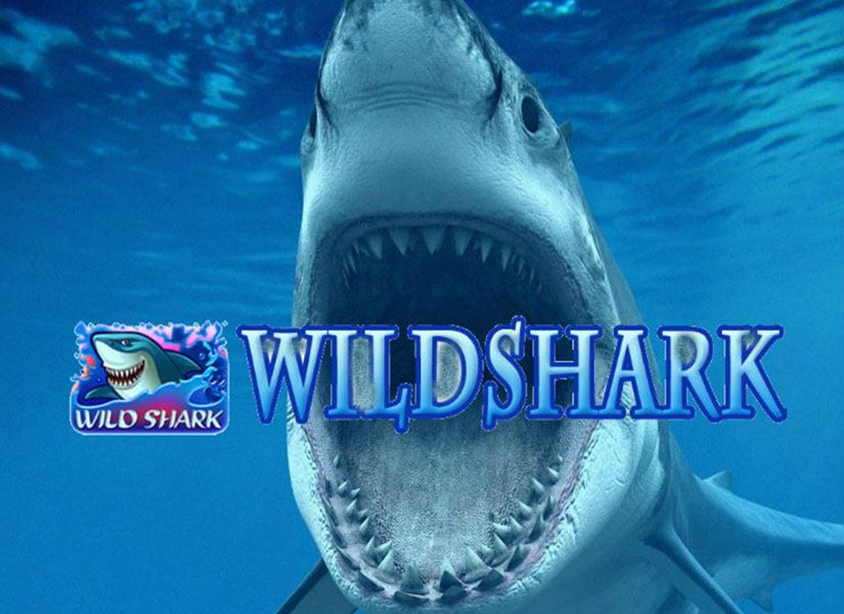 The Wild Shark Online Slot Demo Game by Amatic Industries