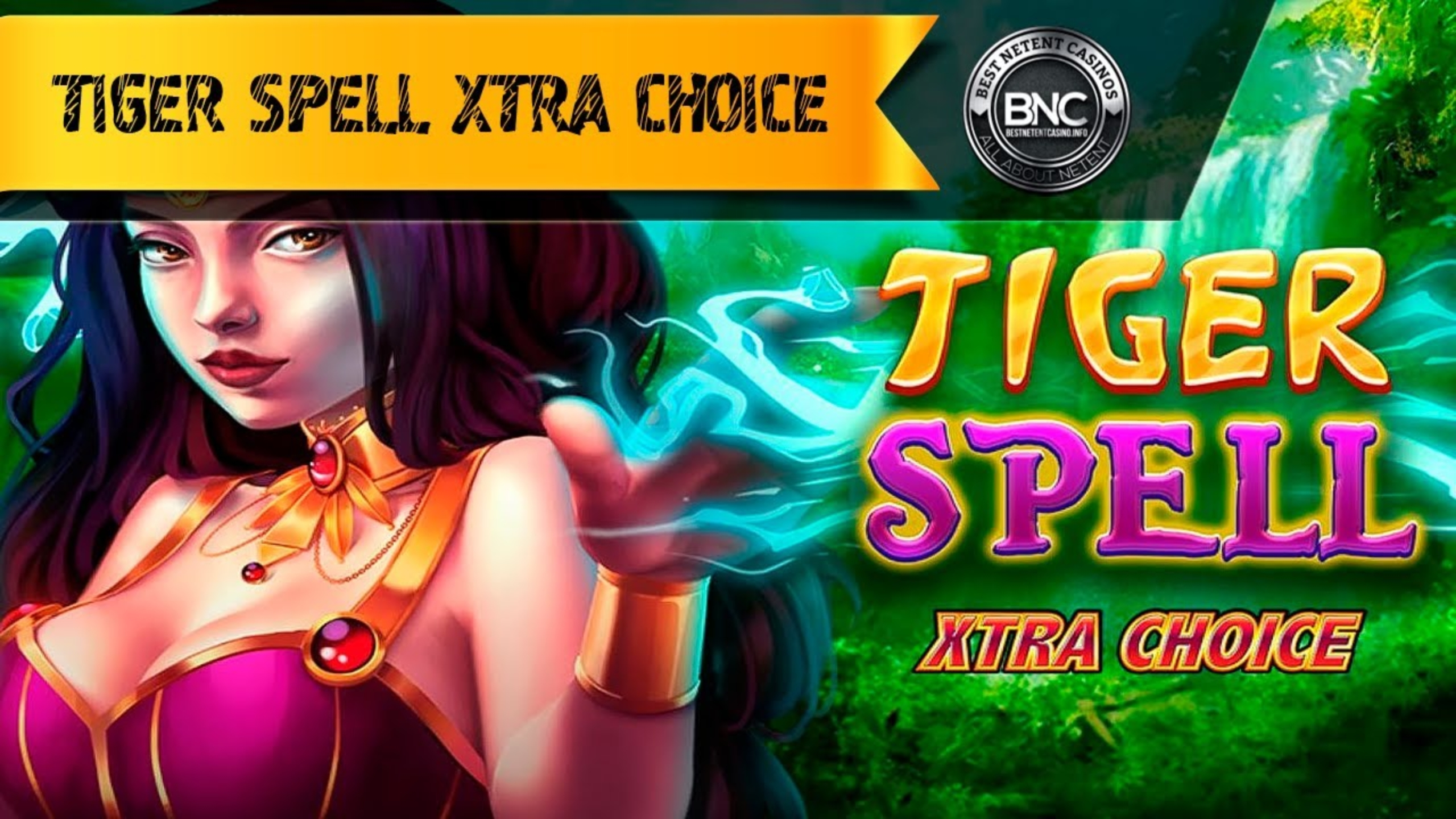 The Tiger Spell Xtra Choice Online Slot Demo Game by High Flyer Games