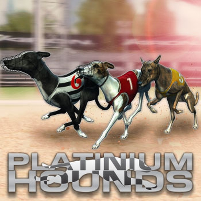 The Virtual Platinum Hounds Online Slot Demo Game by Kiron Interactive