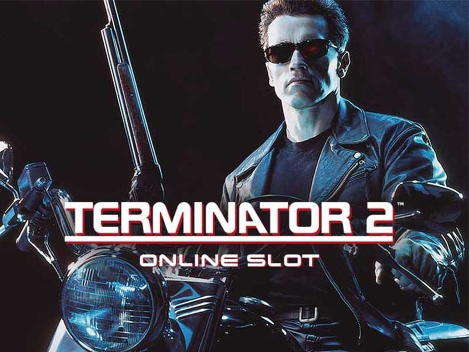 The Terminator 2 Online Slot Demo Game by Microgaming
