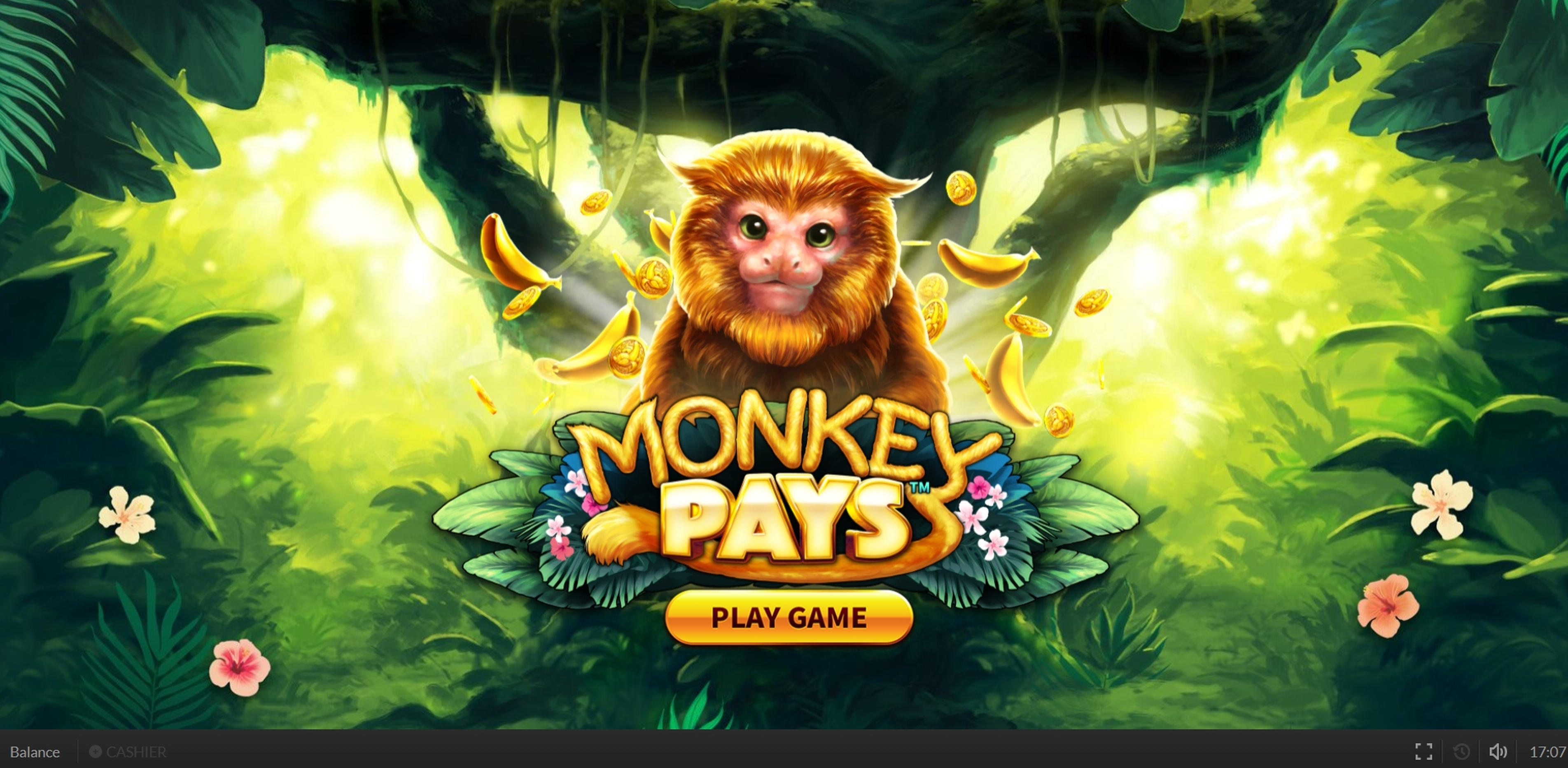 Win Money in Monkey Pays Free Slot Game by Skywind